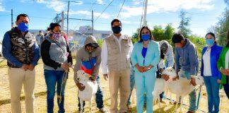 """Reciben 100 familias beneficiadas con """"Mi Ranchito 2020"""""""