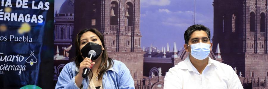 Invita Santa Rita Tlahuapan a su temporada de avistamiento de luciérnagas